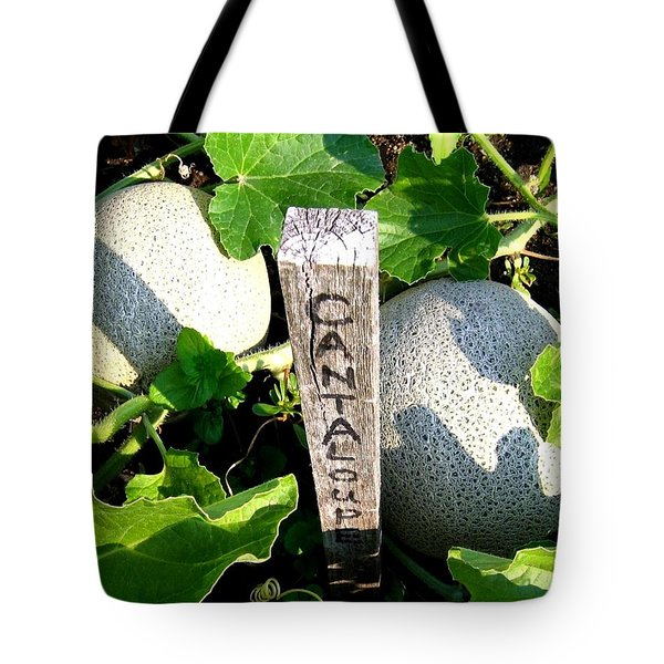 Cantaloupe Tote Bag by Will Borden