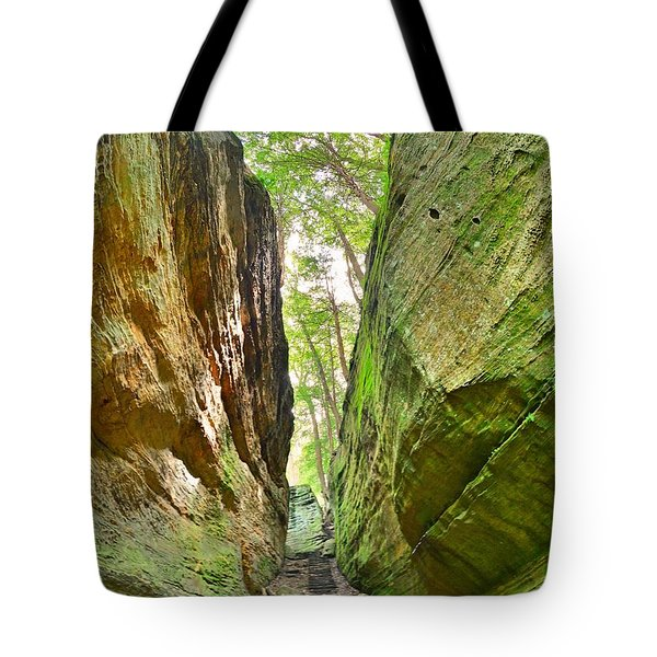 Tote Bag featuring the photograph Cantwell Cliffs Trail Hocking Hills Ohio by Lisa Wooten
