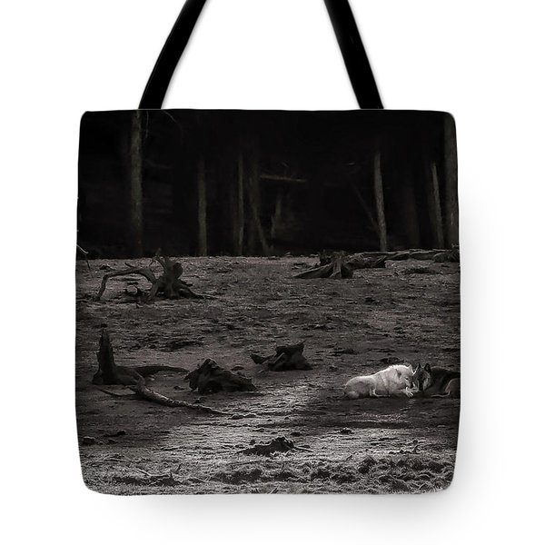 Canyon Alpha Love Story Unsigned Tote Bag