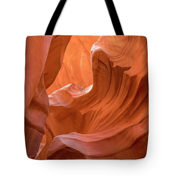 Canyon Beauty  Tote Bag