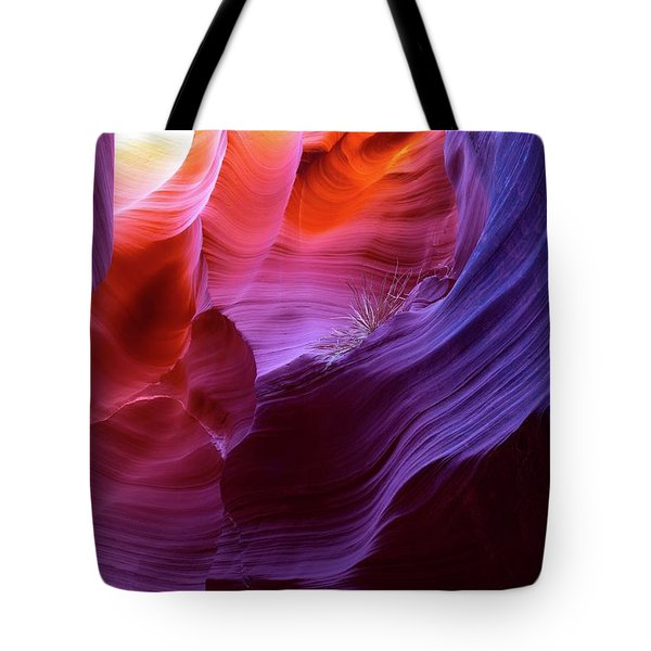 Tote Bag featuring the photograph Canyon Color by T A Davies