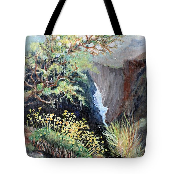 Canyon Land Tote Bag