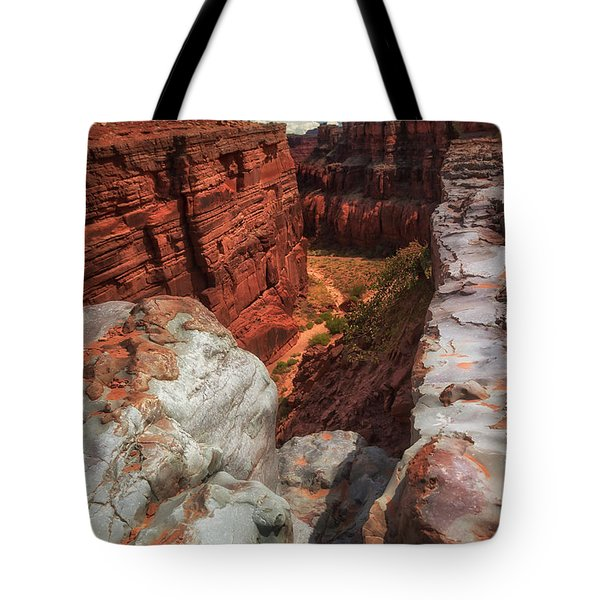 Canyon Lands Quartz Falls Overlook Tote Bag by Gary Warnimont