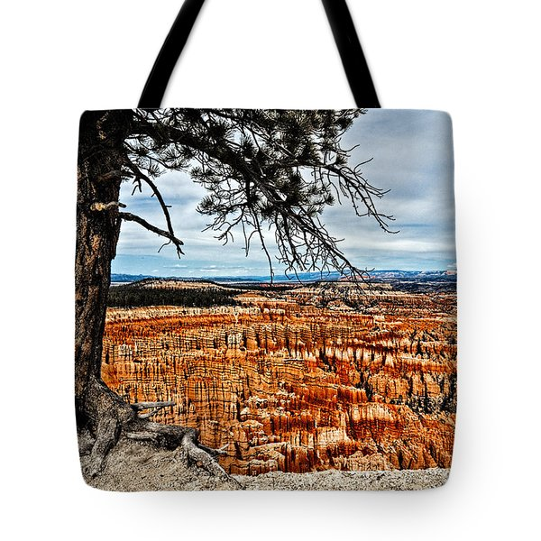 Canyon Overlook Tote Bag by Christopher Holmes