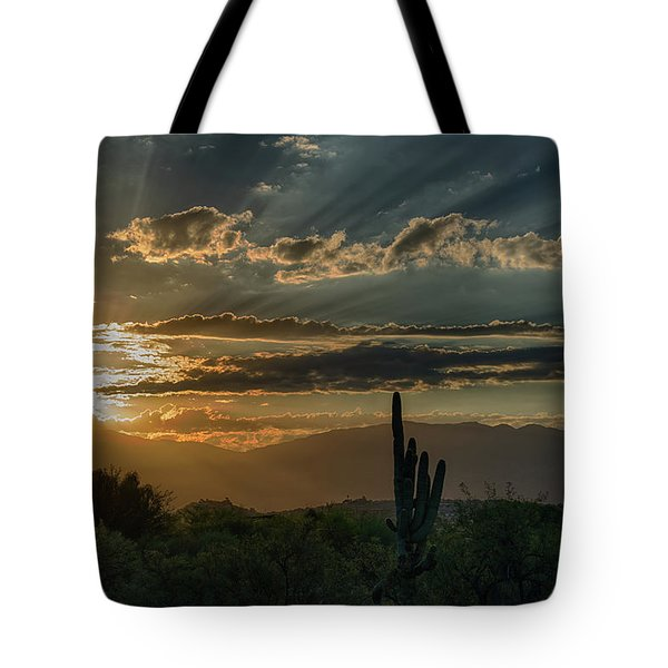 Tote Bag featuring the photograph Canyon Ranch Dawn by Dan McManus