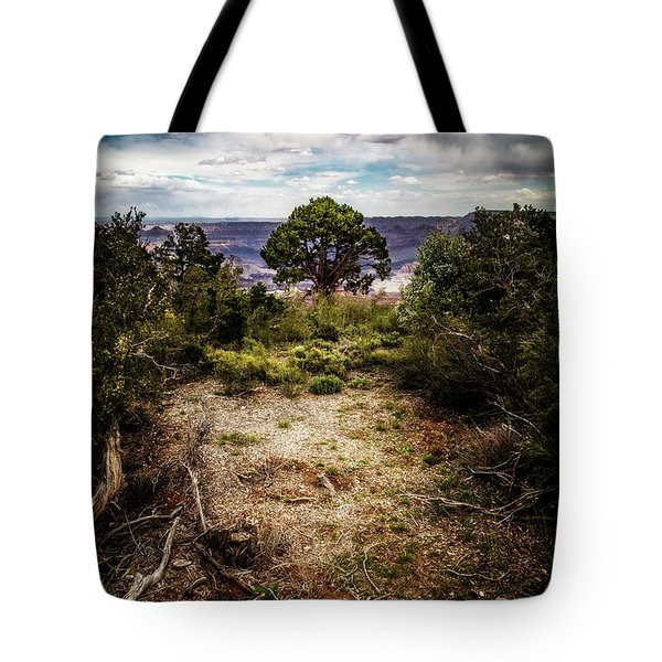 Tote Bag featuring the photograph Canyon Sentinel by Jason Roberts