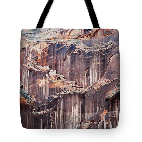 Canyon Wall Tapestry Tote Bag by Geraldine Alexander