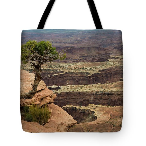 Tote Bag featuring the photograph Canyonlands by Gary Lengyel