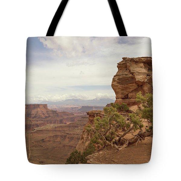 Canyonlands Overlook Tote Bag