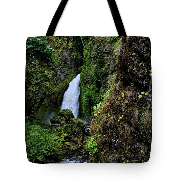 Canyon's End Tote Bag