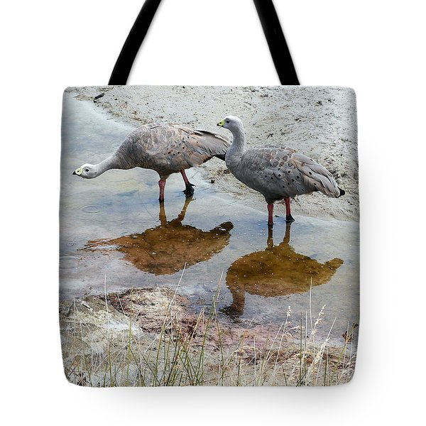 Cape Baron Geese On Maria Island 2 Tote Bag by Lexa Harpell