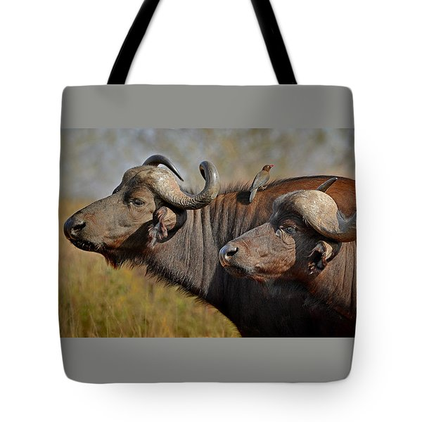 Cape Buffalo And Their Housekeeper Tote Bag