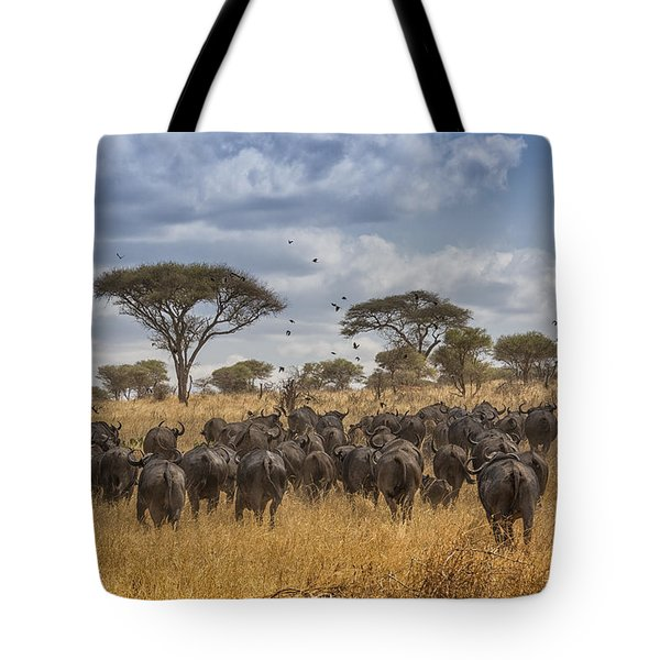 Cape Buffalo Herd Tote Bag by Kathy Adams Clark