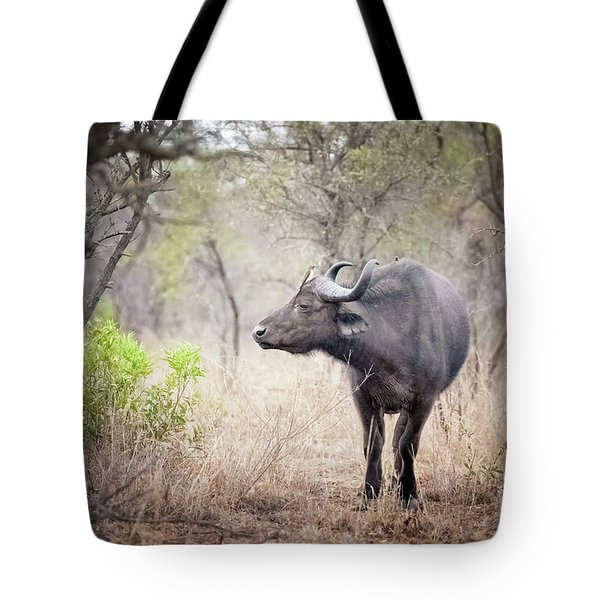 Cape Buffalo In A Clearing Tote Bag