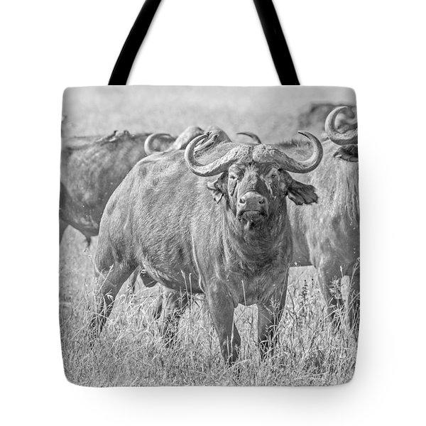 Cape Buffalos In Serengeti Tote Bag