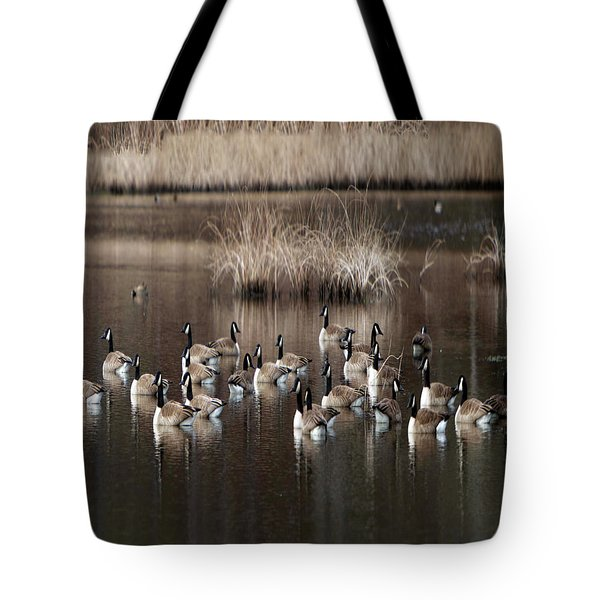 Cape Cod Americana Canada Geese Tote Bag by Constantine Gregory