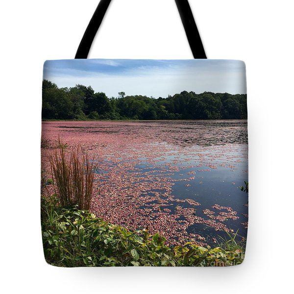 Cape Cod Cranberry Bog Tote Bag
