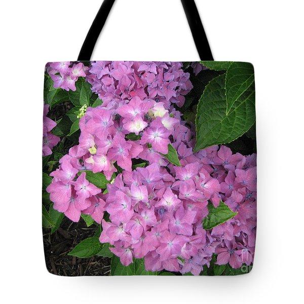 Cape Cod Hydrangeas Tote Bag