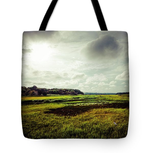 Cape Cod Marsh 1 Tote Bag