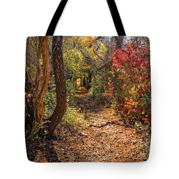 Cape Cod Path Tote Bag