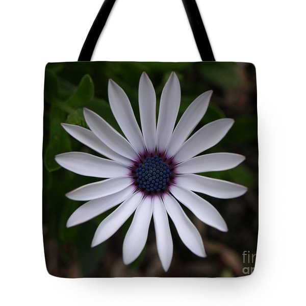Cape Daisy Tote Bag by Richard Brookes