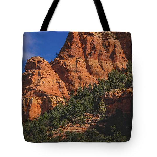 Tote Bag featuring the photograph Capitol Butte Details by Andy Konieczny