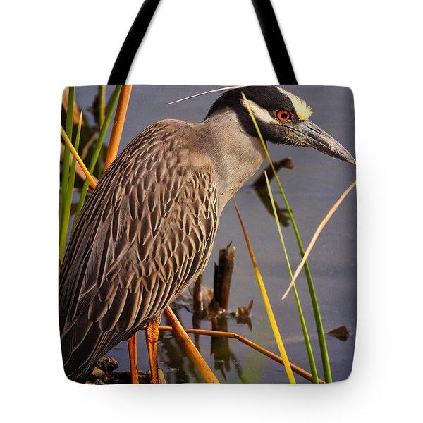 Capped Night Heron Tote Bag
