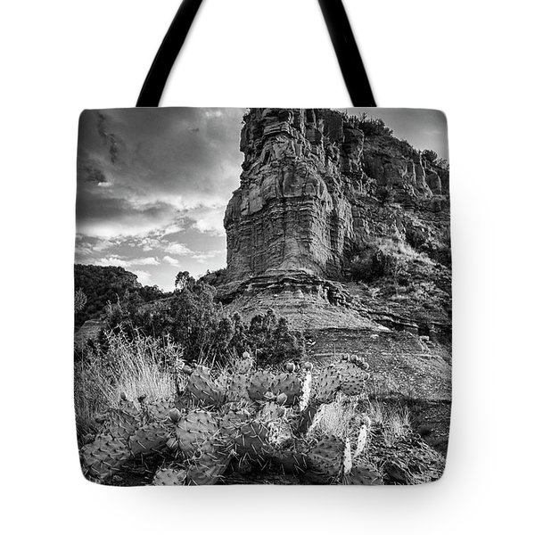 Tote Bag featuring the photograph Caprock And Cactus by Stephen Stookey