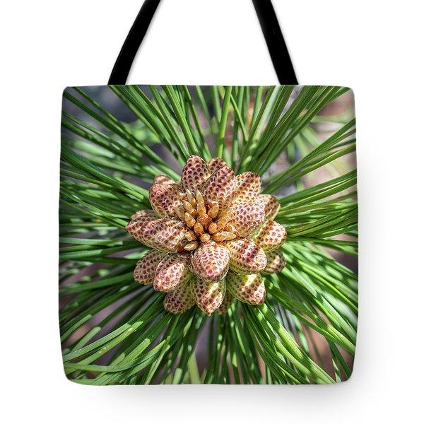 Captivating Pine Tote Bag