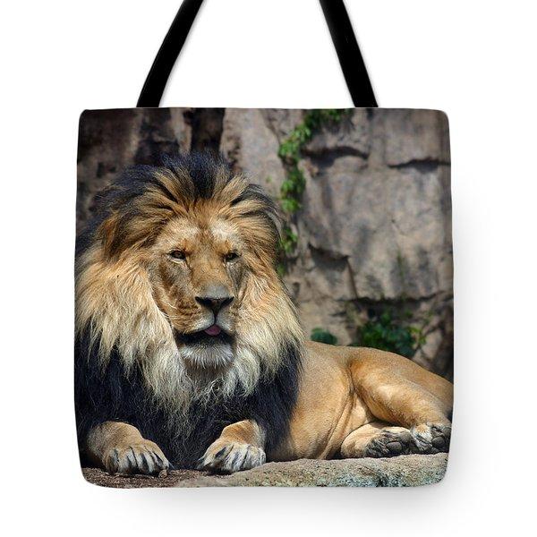 Captive Pride Tote Bag by Anthony Jones