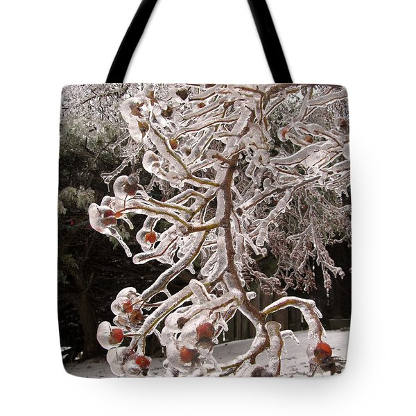 Captured By Icicle Tote Bag