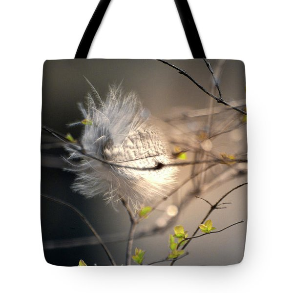Captured Small Feather_02 Tote Bag