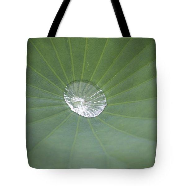 Capturing Water Tote Bag by Linda Geiger