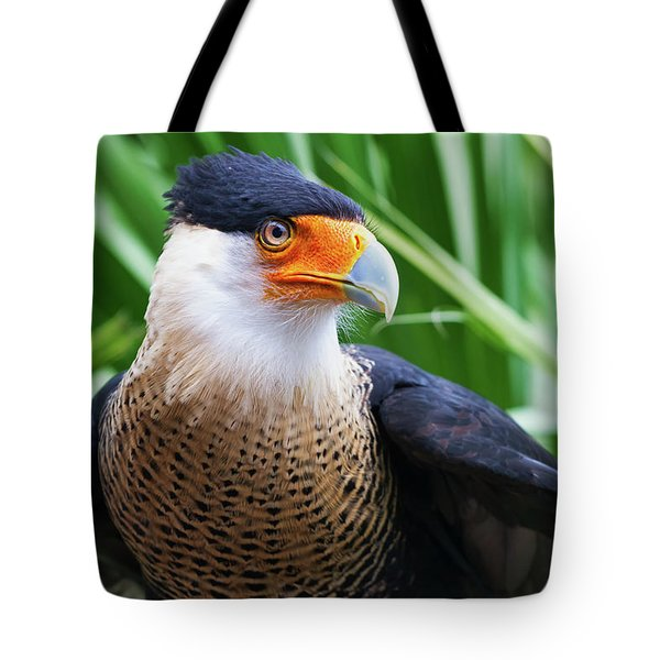 Tote Bag featuring the photograph Caracara 1 by Arthur Dodd