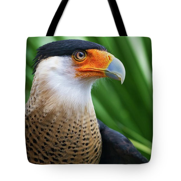 Tote Bag featuring the photograph Caracara 2 by Arthur Dodd