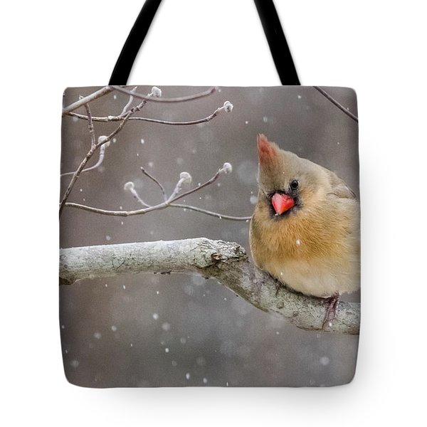 Cardinal And Falling Snow Tote Bag