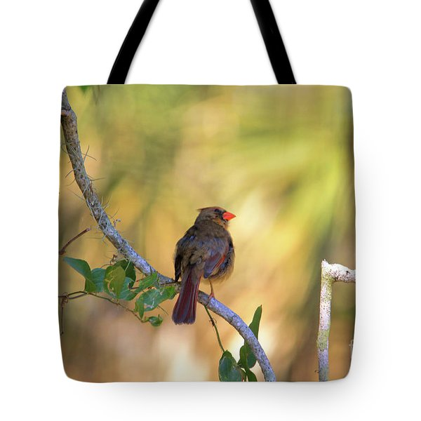 Cardinal  At Buschman Park Tote Bag