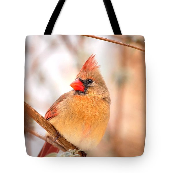 Cardinal Bird Female Tote Bag
