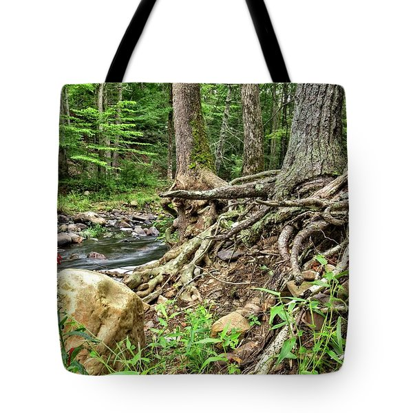 Tote Bag featuring the photograph Cardinal Flower by Alan Raasch