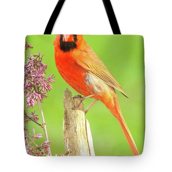Cardinal Flowery Perch Tote Bag