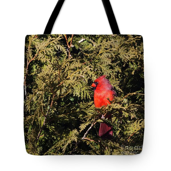 Tote Bag featuring the photograph Cardinal I by Michelle Wiarda