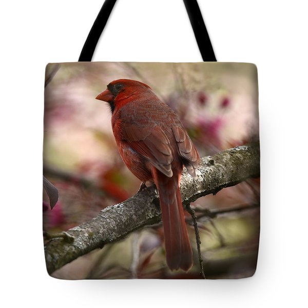Cardinal On Blossoms Tote Bag by Ann Bridges
