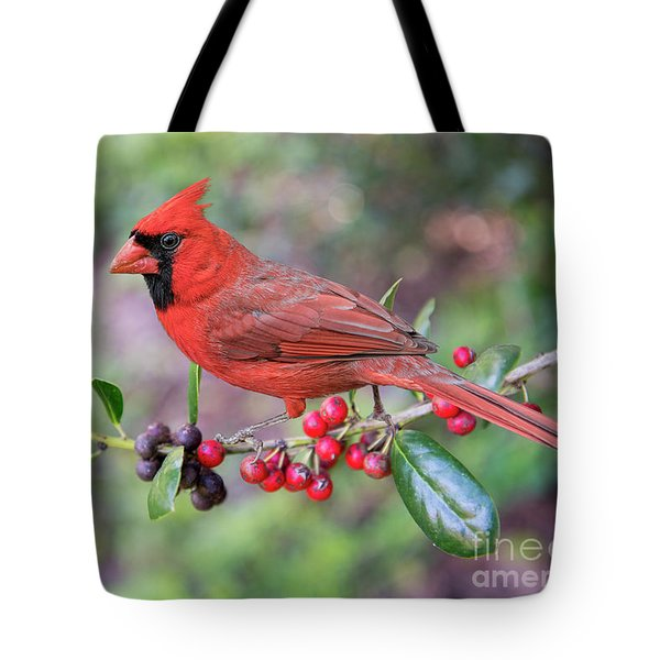 Cardinal On Holly Branch Tote Bag by Bonnie Barry
