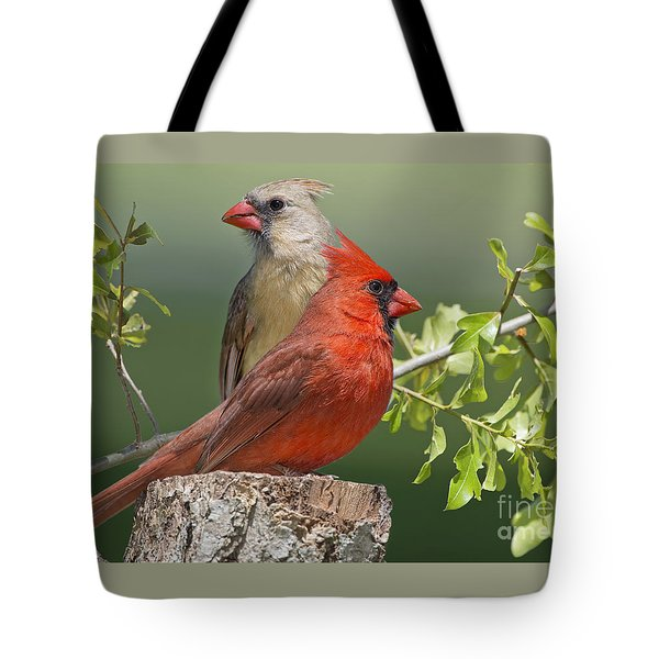 Cardinal Sentries Tote Bag