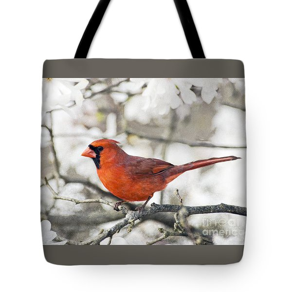Tote Bag featuring the photograph Cardinal Spring - D009909-a by Daniel Dempster