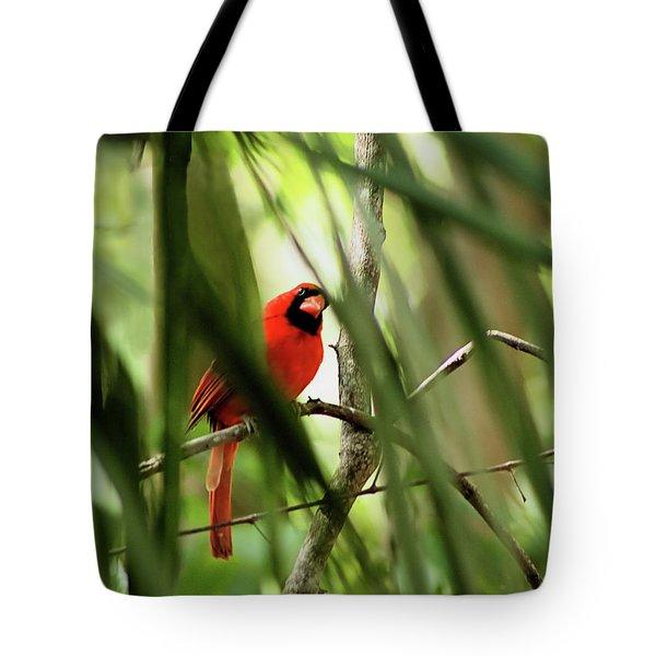 Cardinal Spy Tote Bag