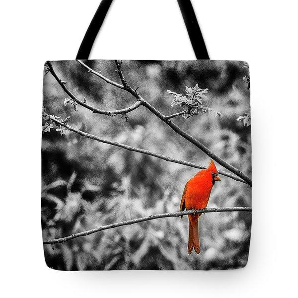 Cardinal... Tote Bag