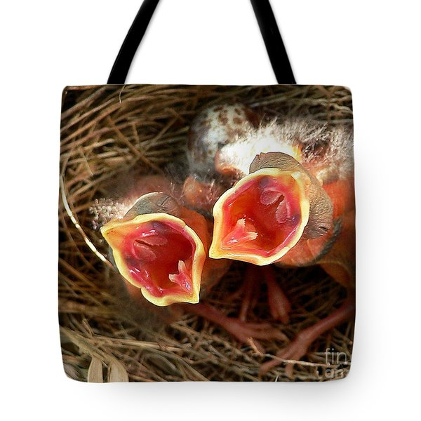 Cardinal Twins - Open Wide Tote Bag by Al Powell Photography USA