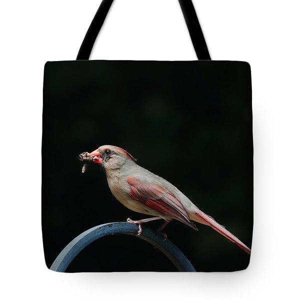 Food For Her Children Tote Bag