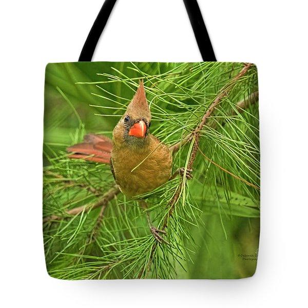 Cardinal With Sass Tote Bag